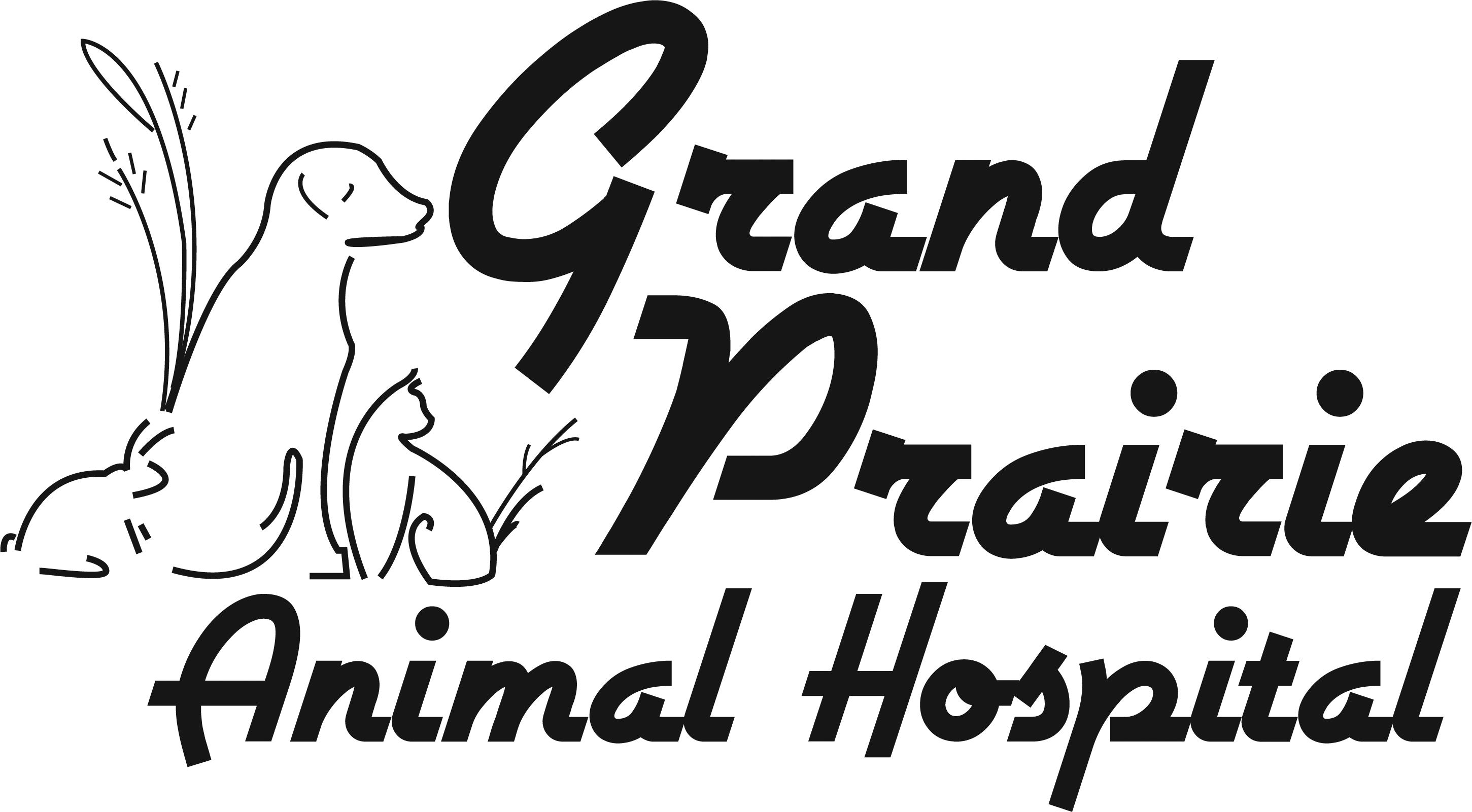 Grand Prairie Animal Hospital - Veterinarian in Manhattan, IL